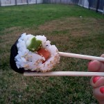A sushi picnic?  Best idea ever