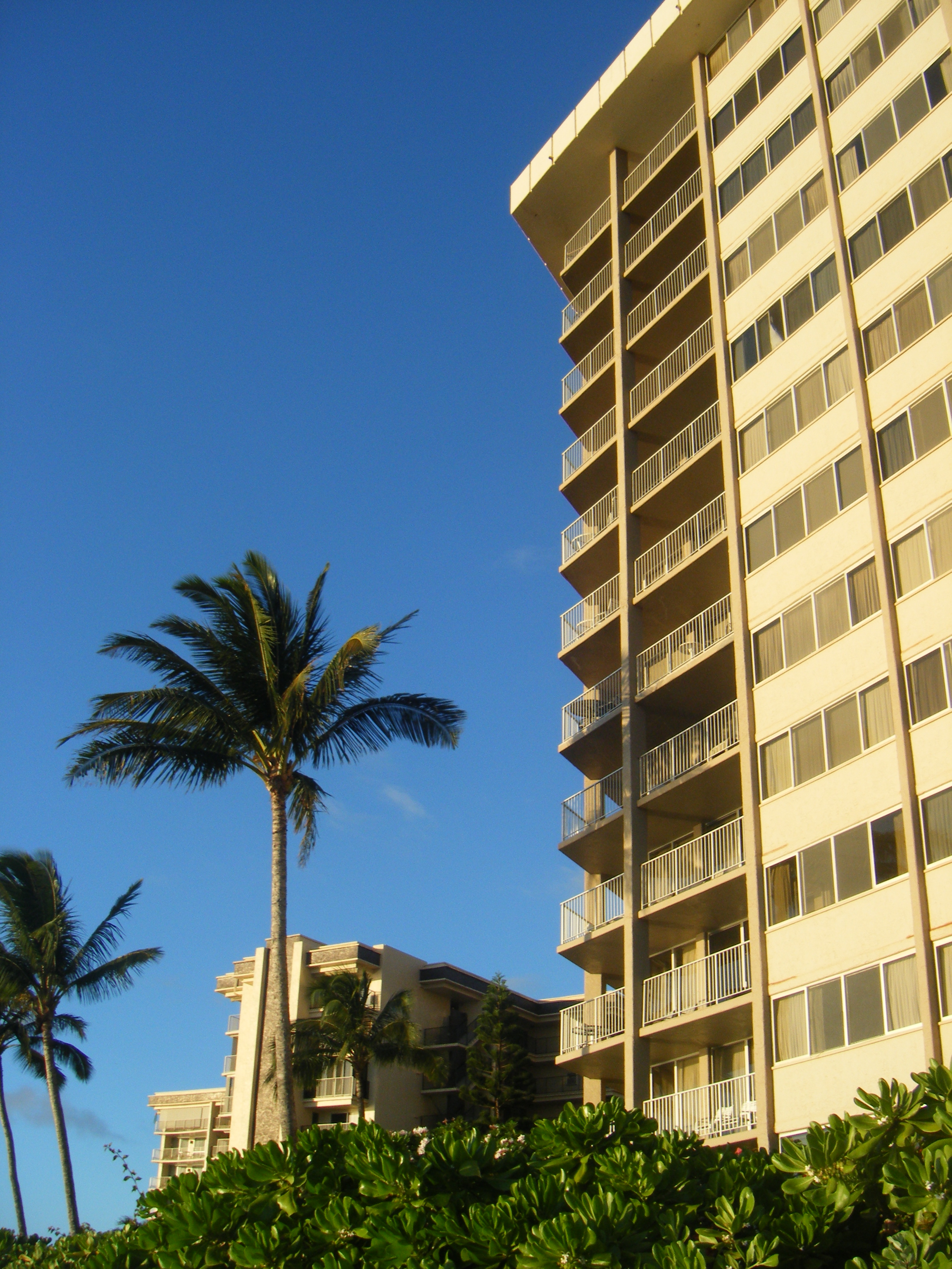 The Royal Kahana