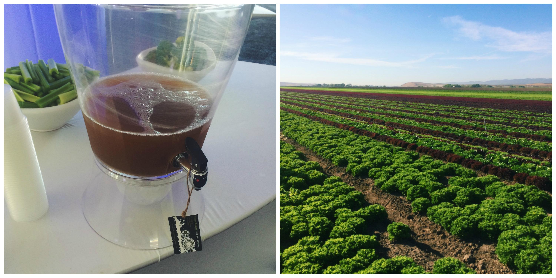 Fields + Juice