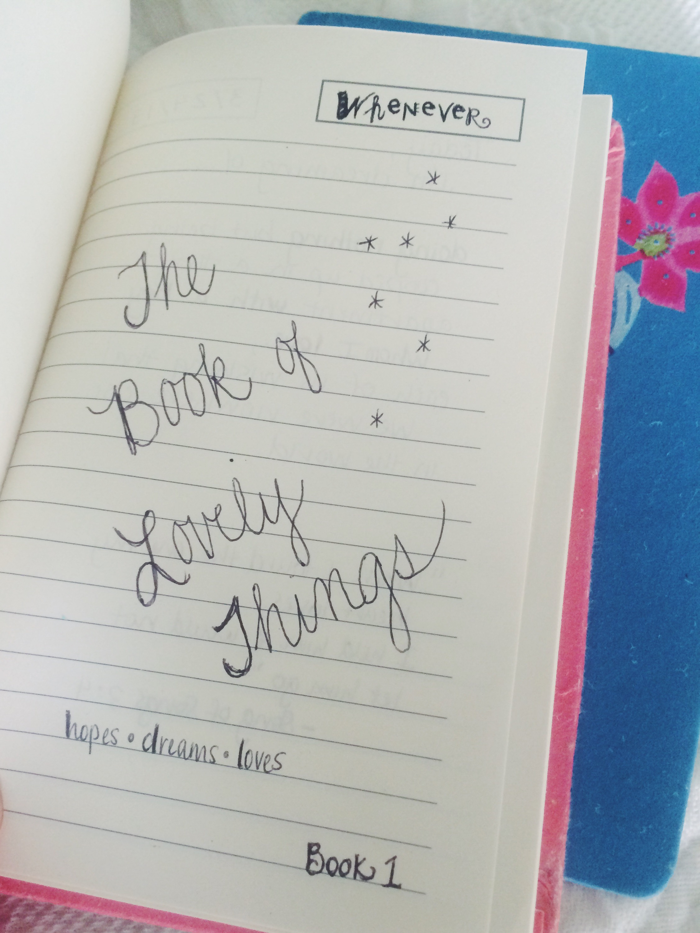 The Book of Lovely Things
