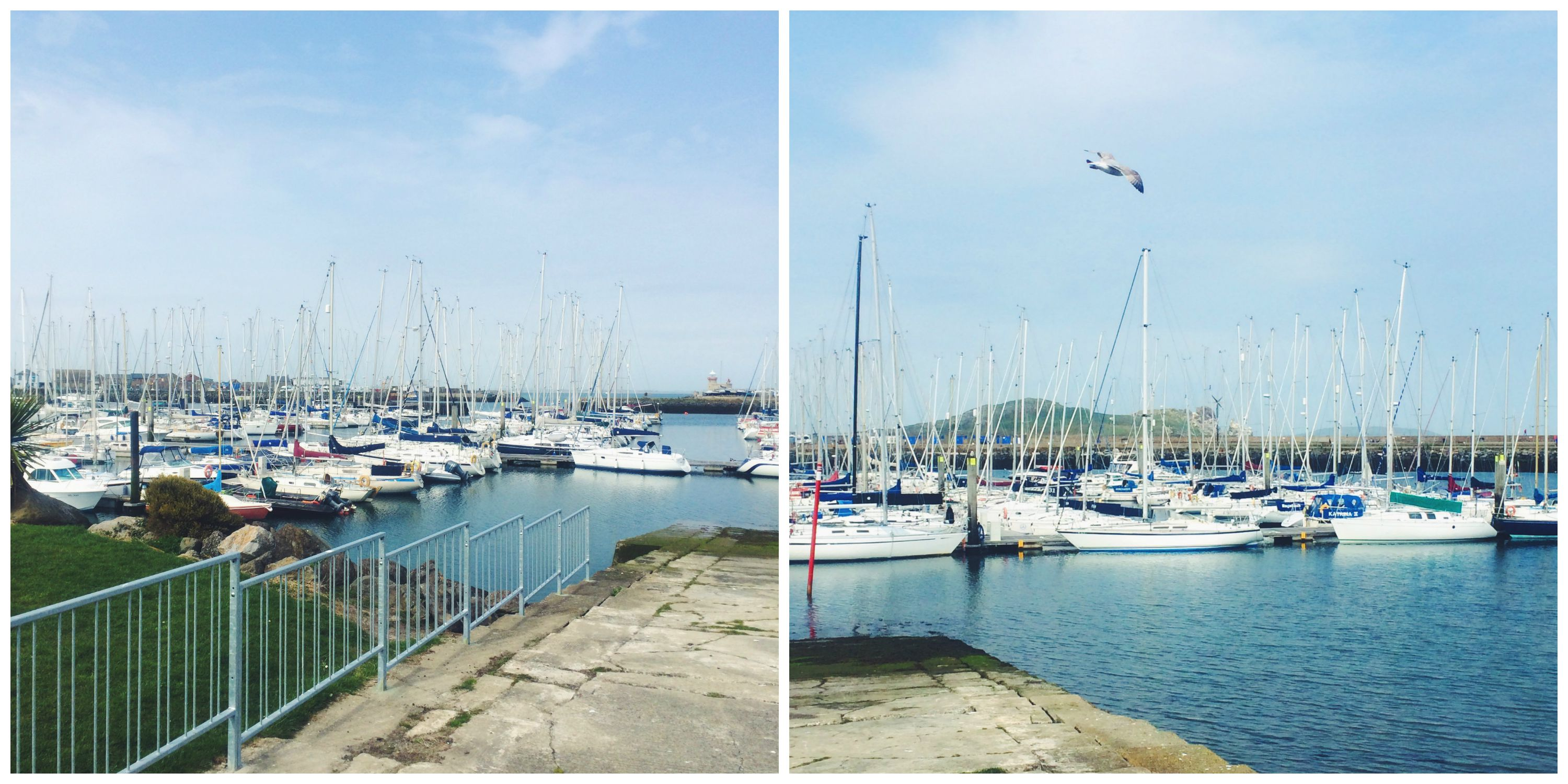 The Harbor in Howth