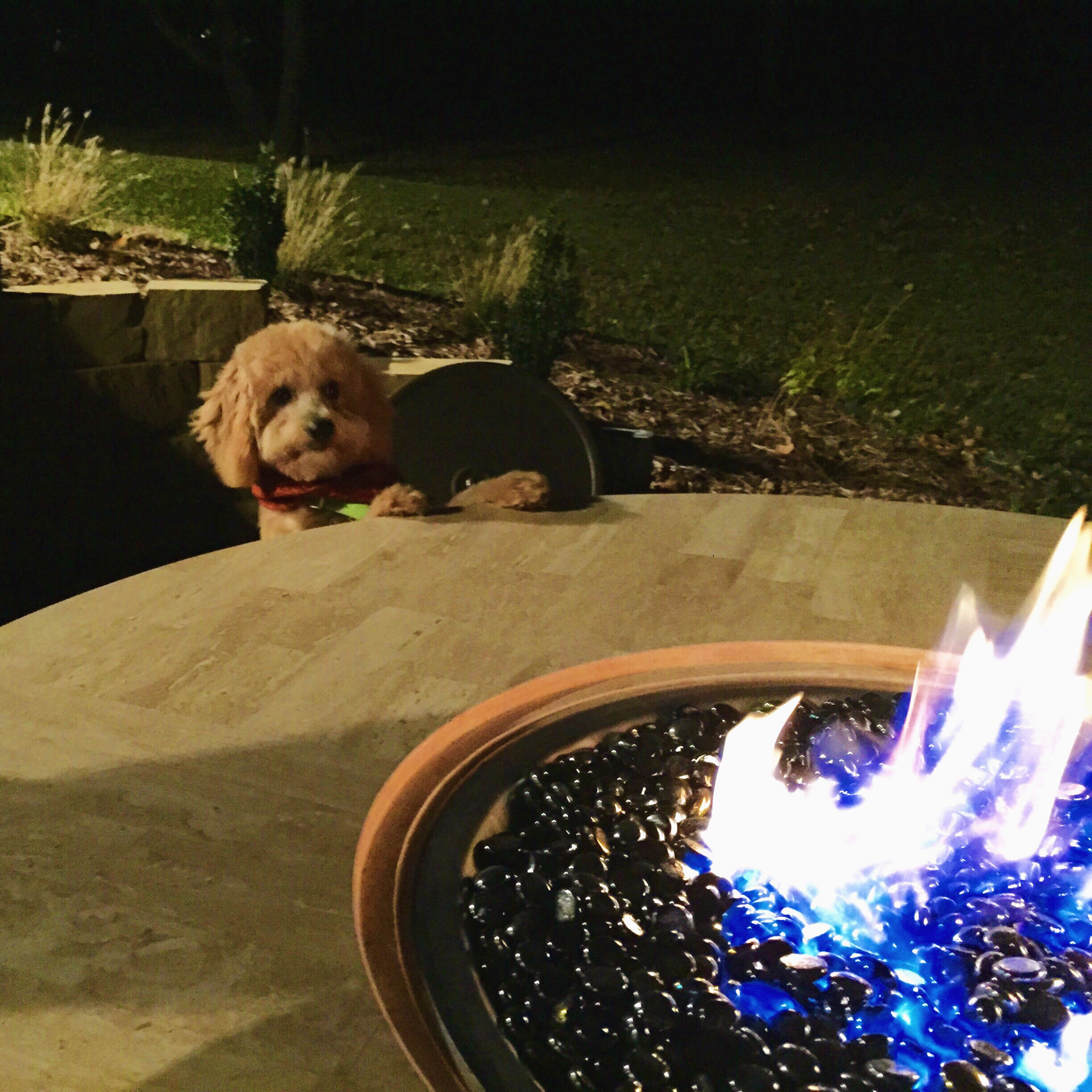 Shiner and the Fire Table