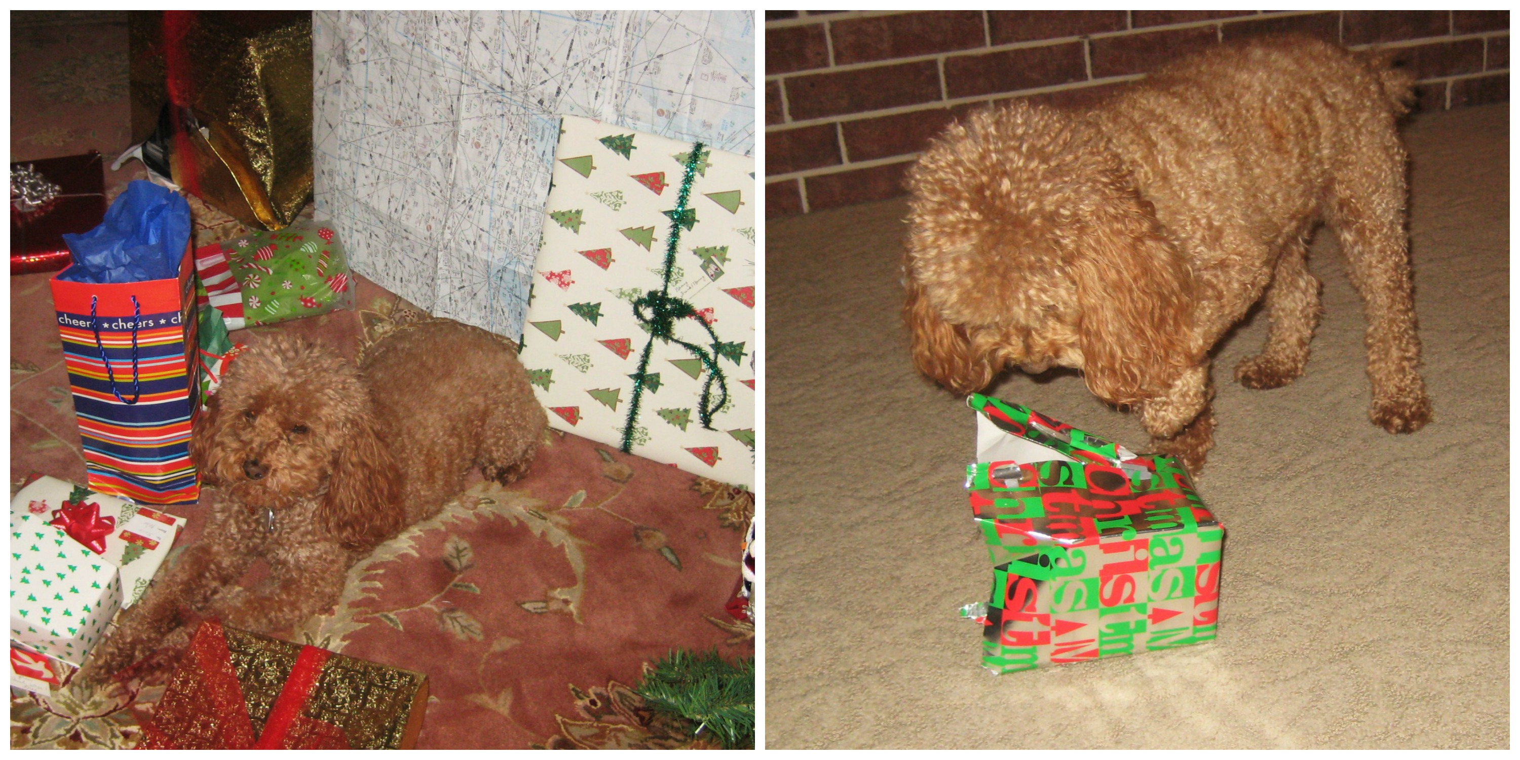 He Loves Presents