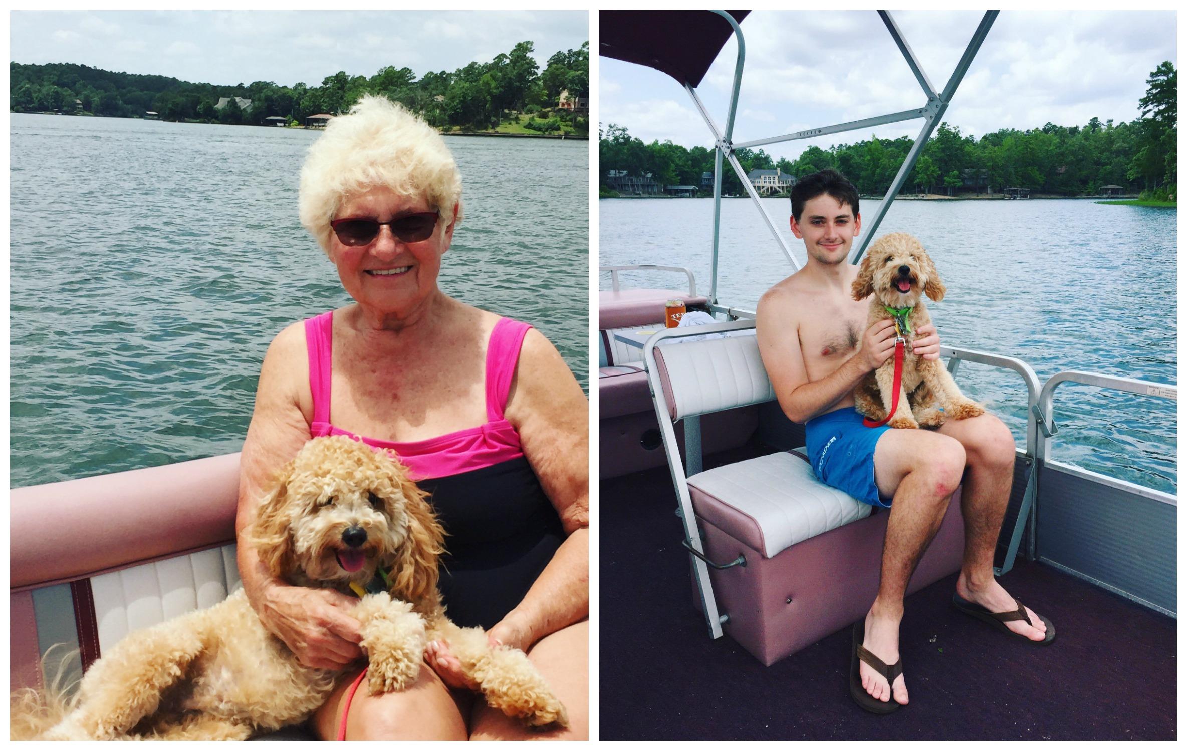 Shiner the Boat Dog